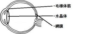 eye06.jpg
